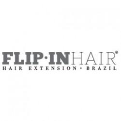 flip-in-logo